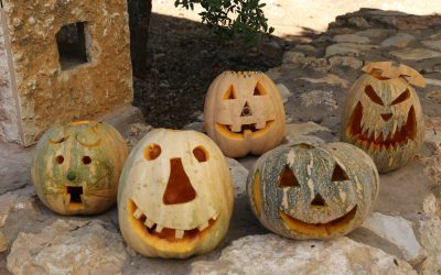 Decorated Pumpkins at Al Ma'wa