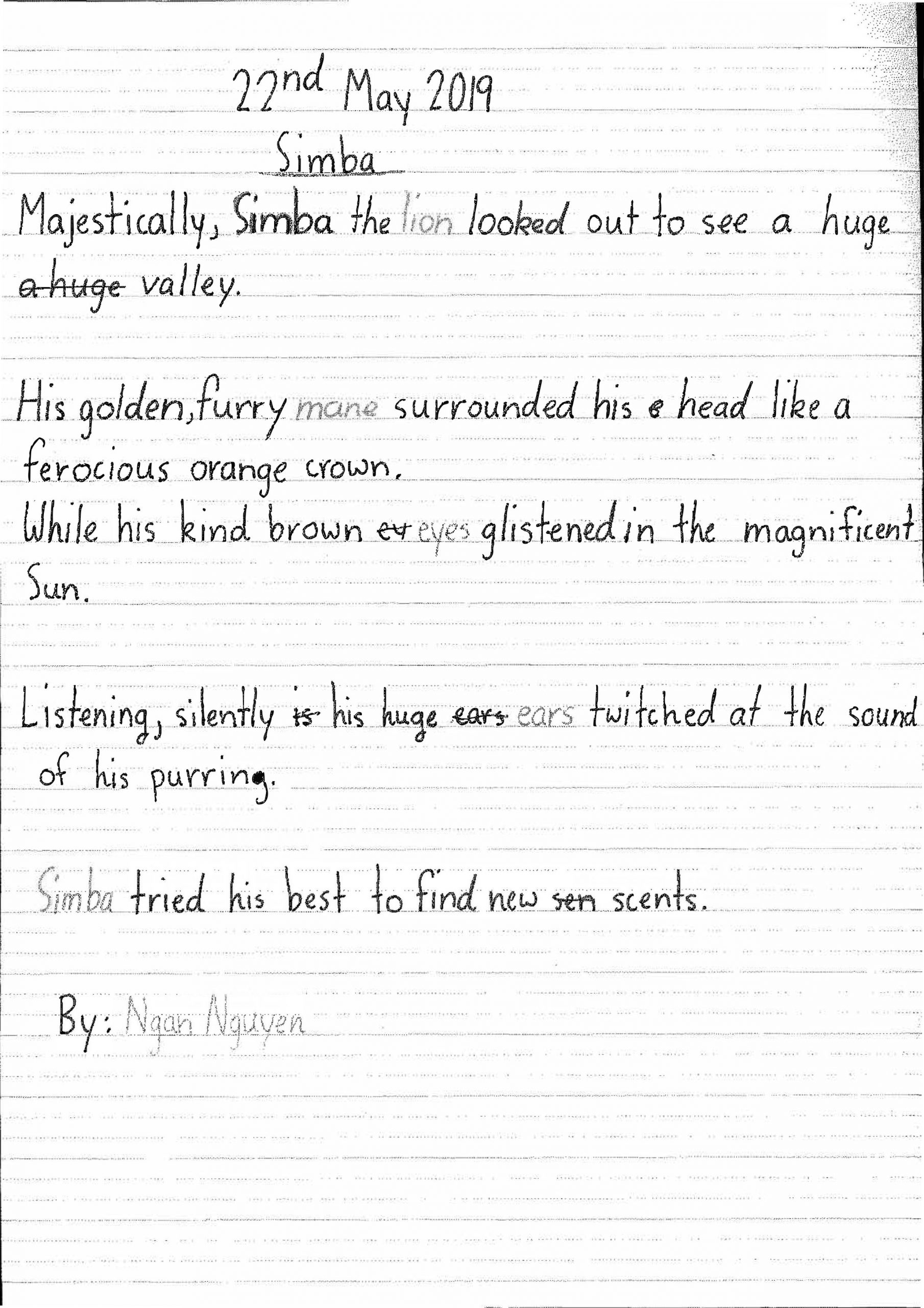 Simba's Story